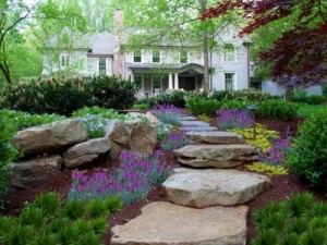 A Landscaping Contractor can help you to choose the right plants for your landscaping.